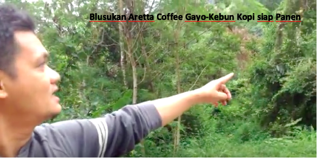 Blusukan Aretta Coffee #1